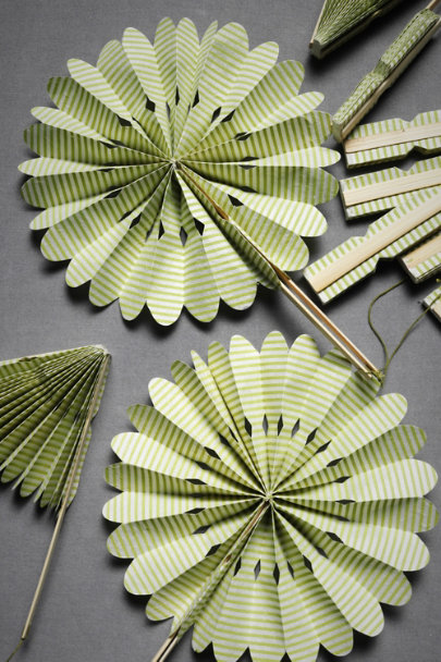Green Crinkle Fans (10) | BHLDN