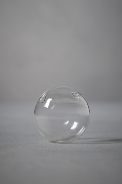 Clear Bubble Vase Placeholder | BHLDN