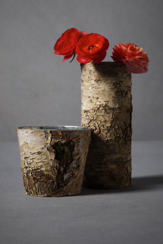 Split Birch Vases