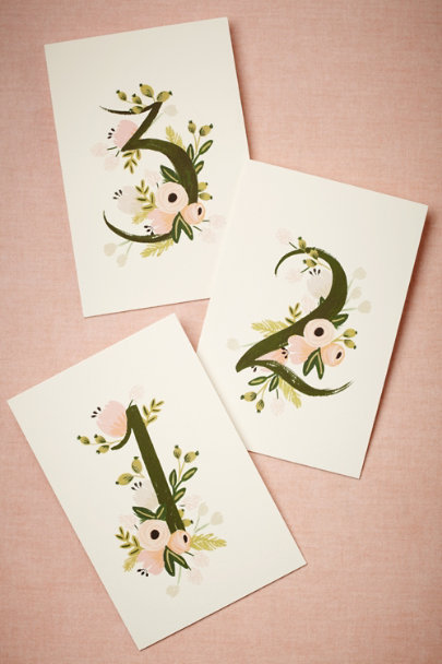 Rifle Paper Co. blush/vine Floravine Table Numbers (5) | BHLDN