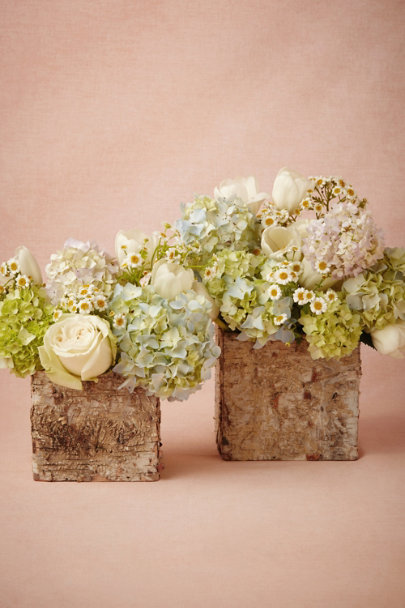 natural Betula Pots | BHLDN