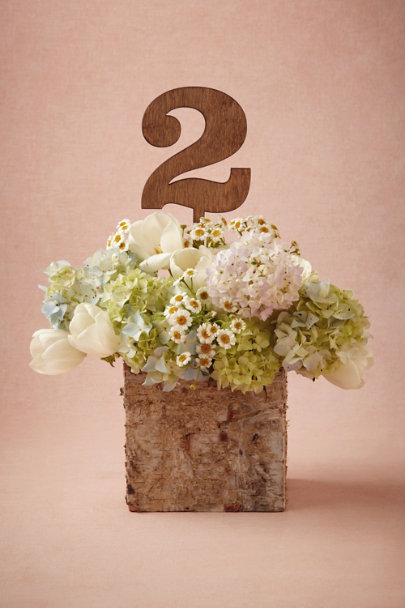 natural Great Outdoors Table Numbers | BHLDN