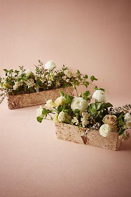 Birch Dreams Planters
