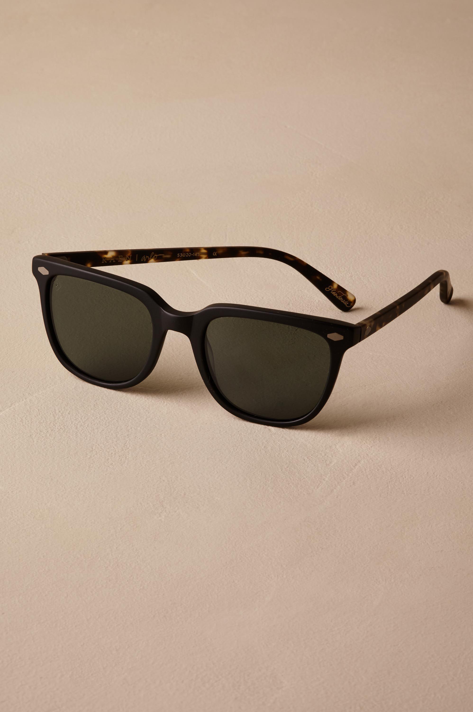Arlo Sunglasses