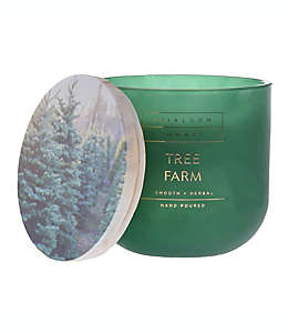 Vela en vaso de vidrio Heirloom Home™ Tree Farm de 396.89 g