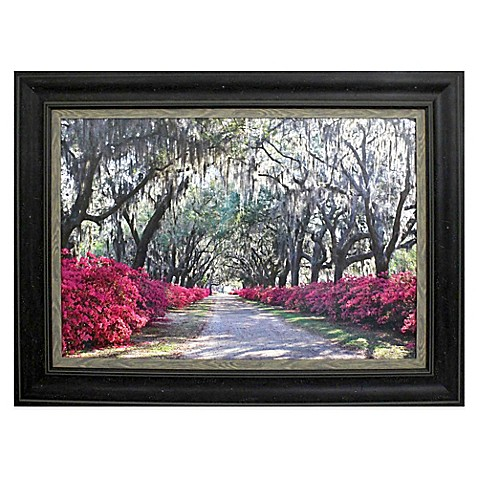 azaleas framed wall art bed bath beyond With best brand of paint for kitchen cabinets with monogram framed wall art