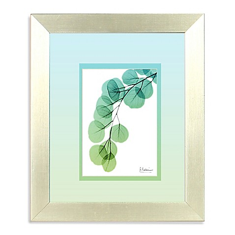 Buy Ombre Xray Ii Teal Framed Wall Art From Bed Bath Beyond