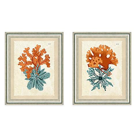 Framed Giclee Teal And Orange Seaweed Wall Art Bed Bath