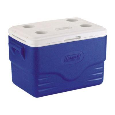 Recipiente Termoplástico azul 36QT (34 L)