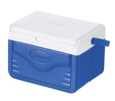 Take 6 Personal Polylite Cooler