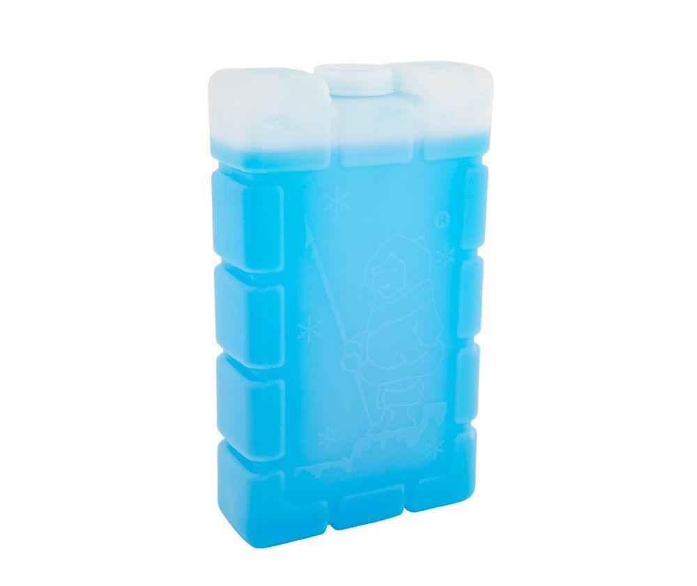 Esky® Ice Brick Medium