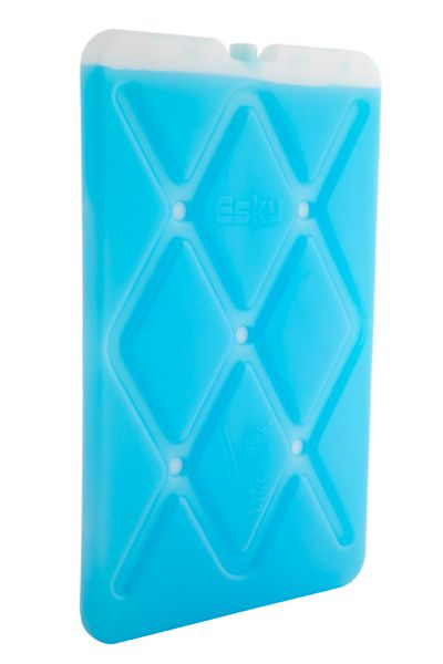 Esky® Slim Ice Brick Large