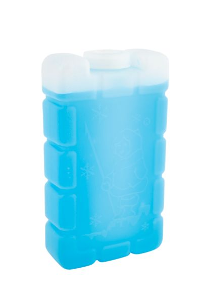 Esky® Ice Brick Small