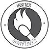Match-Light Logo