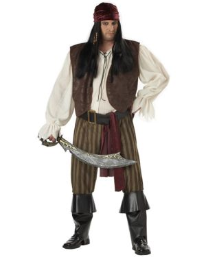 Plus Size Adult Rogue Pirate Costume