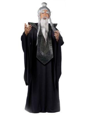 Sensei Master Mens Costume