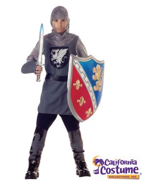 Valient Knight Costume for Boy