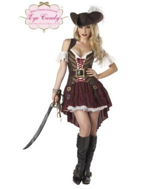 Adults Sexy Pirate Swashbuckler Costume