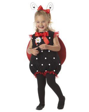Lil Lady Bug Infant Toddler Costume