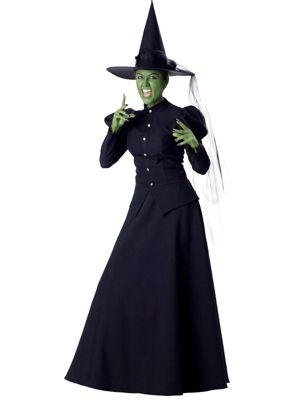 Elite Adult Wicked Witch Costume
