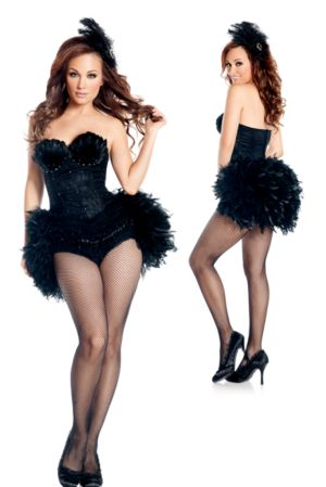 Adult Sexy Deluxe Black Swan Costume