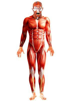 Adult Anatomy Man Suit Costume