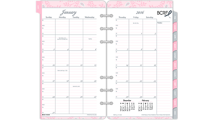 Day-Timer® 2016 Pink Ribbon Accessories Pack Portable Size (11235 16) - Planner Accessories