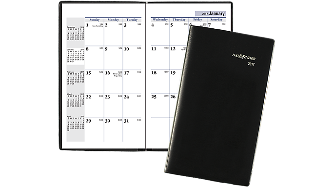 At-A-Glance DayMinder Monthly Pocket Planner (SK53) - Pocket Planners SK530017