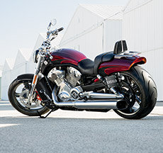 2015 V-Rod Muscle