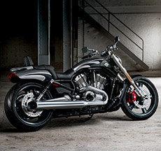 2016 V-Rod Muscle