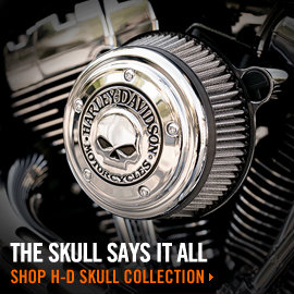 Harley-Davidson Skull Collection