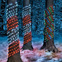 Tree Trunk Candy Cane Lights