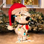 Snoopy Christmas Decorations