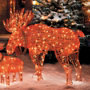 Christmas Lighted Moose