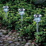 Contemporary Solar Pathway Lights