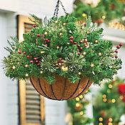 Double Magnetic Wreath Hanger Improvements Catalog Autos