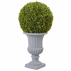 2.5' Boxwood Topiary