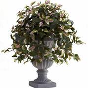 Hoya Artificial Plant