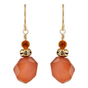 Art Smith by BARSE Carnelian Freeform Earrings