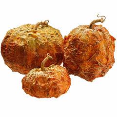 National Tree Co. Pumpkin 3-pc. Tabletop Decor