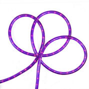 18' Purple Indoor/Outdoor Rope Lights with 1