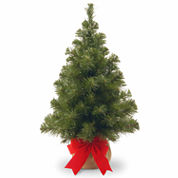 National Tree Co. 2 Feet Noble Spruce Christmas Tree