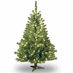 National Tree Co. 4 Foot Kincaid Spruce Pre-Lit Christmas Tree