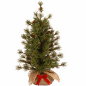 National Tree Co 3 Feet Bristle Cone Christmas Tree