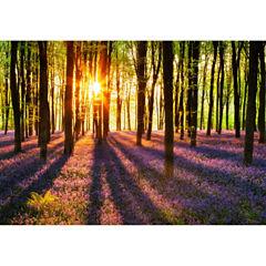 Woodland At Dawn Wall Mural