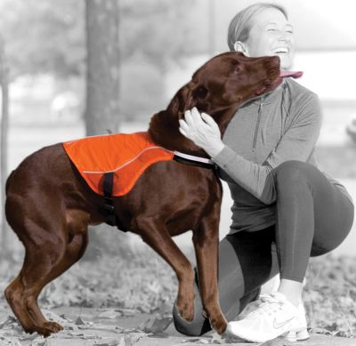 Kurgo Reflect & Protect Active Dog Vest
