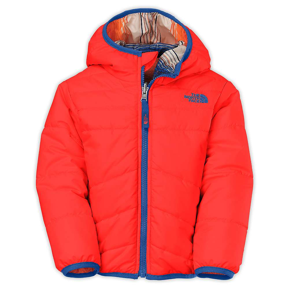 3877c84b7 north face perrito jacket toddler boy - Marwood VeneerMarwood Veneer