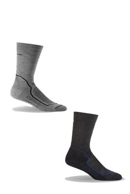Icebreaker Men's Hike+ Medium Crew 2 Pack Sock