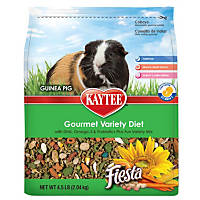 Kaytee Fiesta Gourmet Food for Guinea Pigs