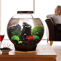 biOrb Black Aquarium Kit with Light